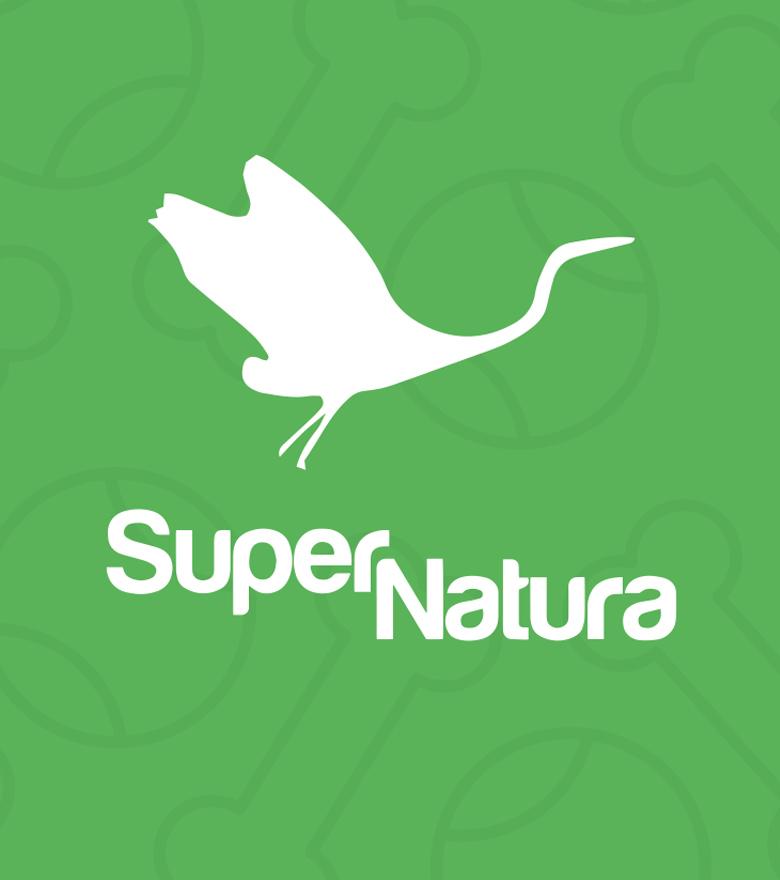 supernatura-blog